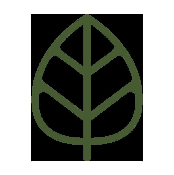 Wholesale Full Spectrum CBD Distillate | Bison Botanics